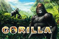 Gorilla игровые аппараты онлайн